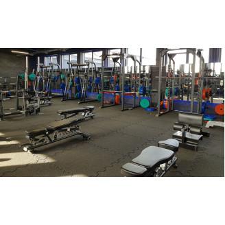 Dalle de Fitness et Musculation